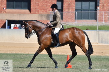 Best Novice Show Hunter Over 15hh last year, John de Marco's beautiful Thoroughbred went one better this year. Ridden by Clint Bilson the Lightweight Show Hunter winner went on to take out the 2018 Adelaide Royal Show Hunter Horse Championship.