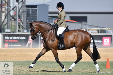 Andrea Merry is pictured aboard her wonderful Show Hunter 15.2-16hh winner, 'Quantador' during the Championship ride off.
