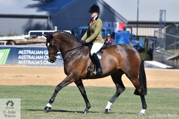 Charlie Hunt is pictured aboard Julie Payne's Show Hunter 16-16.2hh winner, 'Roxleigh Frederica' during the Show Hunter Championship ride off.