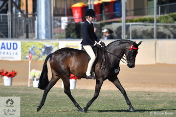 Harry Beckel rode his own and Millicent Quigley-Smith's well performed, 'Leanda Chances Are' to take sixth place in the strong class for Child's Hack Over 15hh.