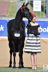 Both striking a beautiful pose. Georgie Kellock is pictured with Christine Frost's, 'Ink' on their way to second place in Thoroughbred Racing SA Prize for Fashions Off The Track.