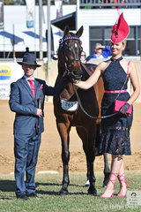 Jess Castle is a very tall girl and she is pictured with the Adams and Strooper nomination, 'Vasari'. Jess' handler is jockey Josh Adams that rode Vasari in his racing career. They took third place in the Racing SA Fashions Off The Track.