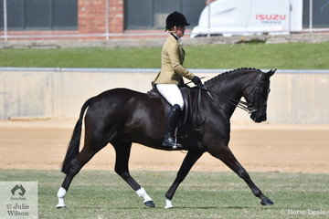 Shauna Chaplin is pictured aboard her Heavyweight Show Hunter Galloway winner, 'Lancefield Park Rajah' during the Championship ride off.