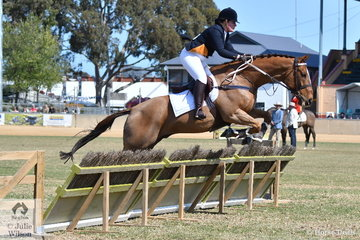 Chelsea Harper and 'Clown Prince' representing the Ebondale Hunt Club are pictured during the Lady's Hunter's Plate this morning.