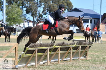 Brittany Francis representing the Penola Hunt Club rode her, 'Diamond J Heidi' to win the Lady's Hunter's Plate this morning.