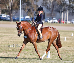 """Olivia Carter placed Top 10 in her Rider 9 and under 12 years event. Her pony """"NJS Town Crier"""" won the Child's Large Show Hunter Pony class as well as Reserve Champion Large Show Hunter Pony."""