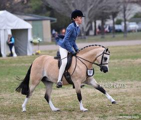 "Kyah Dema's exhibit ""Brampton Casanova"" were competitors in The ARMANII PARK STUD Small Show Hunter Pony event."