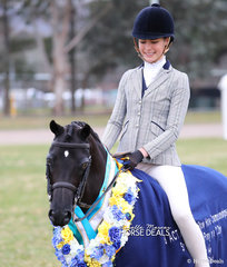 """The ARMANII PARK STUD Champion Small Show Hunter Pony """"Langtree Just Divine"""", exhibited by Christy Pollock."""