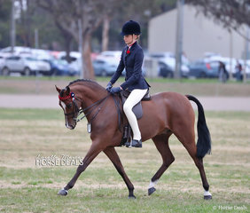 """Kate Dertell's exhibit """"Kizashi"""" working out in The COWGILL FAMILY Large Pony event, ridden by Jessica Dertell."""