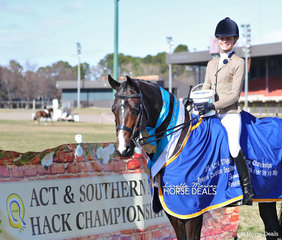 """Sophie Walker rode """"Illarak Donntrell"""" to claim The POSEIDON EQUINE Reserve Champion in the Small Show Hunter Hack event."""