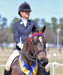 """Rhonda Bromley's """"Belromy Black Markane"""" was ridden by Kirsten Strath to win Reserve Champion in The CBC CONSTRUCTIONS Small Hack Championship."""