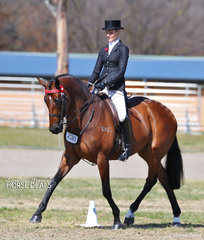 """Courtney McLeod's """"Optimal"""" was Reserve Champion in The MDH ROOFING Large Hack Championship."""
