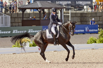 FEI World Equestrian Games... Tryon USA Adrienne Lyle USA riding  Salvino.Photo FEI/Liz Gregg