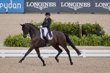 FEI World Equestrian Games... Tryon USA Dorothee Schneider on Sammy Davis Jr.Photo FEI/Liz Gregg