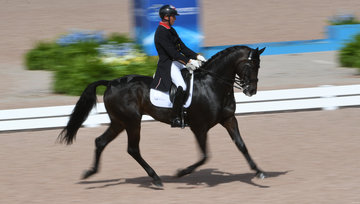 FEI World Equestrian Games... Tryon USA Carl Hester of Great Britain and Hawtins Delicato in the Dressage