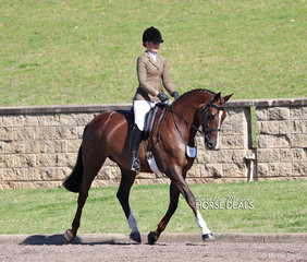 """Sarah Olsen riding Melissa Clarke's """"Cedar Park Tequila Rose"""", they placed 2nd in the Newcomer Show Hunter Hack over 16hh event."""