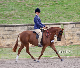 "Tennile Tuoro's ""Astral Mid Summer Nights Dream"" won the Large Show Hunter Pony Owner Rider class."