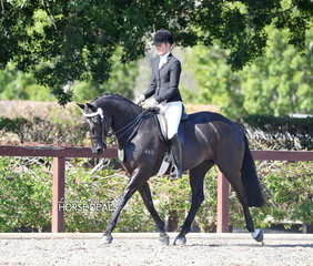 "Lucy Batten rode ""Mains Picture Perfect"" to take 2nd place in the Adult Rider 18-25 years event."