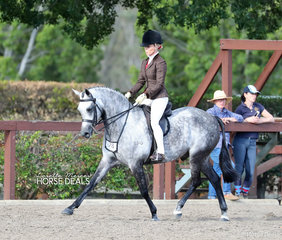 "The Diamond Deluxe Horsewear Large Show Hunter Pony winner ""Hanley Park Thumper"" and Trinette Crawford."