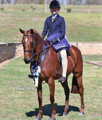 """Lachlan McGill and """"Bayview Crown Prince"""" were the winners of the Child's Large Show Hunter Galloway Championship."""