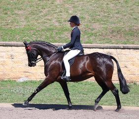 "Zali Petersen was the Champion Rider 12-14 years, riding ""Esk Versace""."