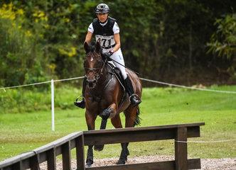 FEI World Equestrian Games... Tryon USA Ingrid Klimke of Germany on SAP Hale Bob OLD.Photo FEI/Martin Dokoupil