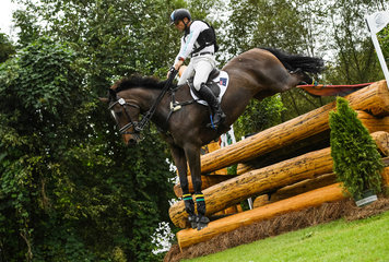 FEI World Equestrian Games... Tryon USA Shane Rose of Australia on Virgil.Photo FEI/MARTIN DOKOUPIL