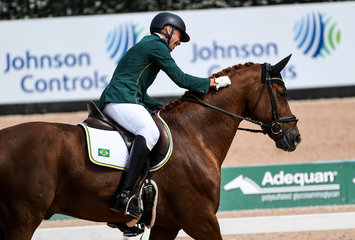 FEI World Equestrian Games... Tryon USA Para Dressage Rodolpho Riskalla of Brazil on Don Henrico.Photo FEI/Martin Dokoupil