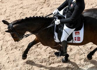 FEI World Equestrian Games... Tryon USA Para Dressage Susanne Jensby Sunesen of Denmark on CSK's Que Faire.Photo FEI/