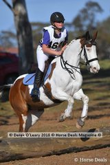 "Liliana Dean representing Hastings Pony Club in the Grade 5 riding ""Little G Radiant Glo/oki"""