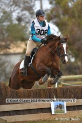 """Equal First in the Grade 4 Section 2 Abbey Mamers representing Main Ridge Pony Club riding """"Hillswood Nina"""""""