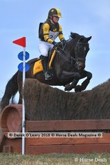 """Justine Boyd riding """"Electrix"""" representing Colac Pony Club in the Grade 1"""