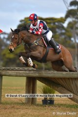 "Third Place in the Grade 1 went to J'aime Mallon riding ""Irish Gem"" representing Macedon Pony Club"