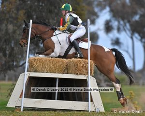 """3rd place in the Grade 2 Section 1 went to Sammi Browell riding """"Top Deck"""" representing Bendigo Pony Club"""