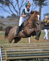 """Alice Knox representing Glenlyon Pony Club riding """"Cowarie Station Gecko"""" in the Grade 3 section 1"""