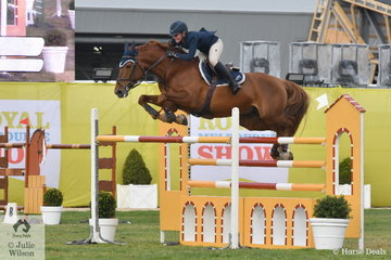 Twenty one year old, Brooke Langbecker jumped two good clear rounds riding her stallion, Quintago I for second place in the Prince of Wales Cup.