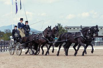 FEI World Equestrian Games... Tryon USA Carriage 1020.Benjamin Aillaud.1020A Beene van de Dubelsile / 1020B Douwe Fan't Oosterzand./ 1020C Jim./ 1029D Sybren P.Photo FEI/Christophe Tani..re