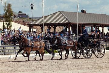 FEI World Equestrian Games... Tryon USA Carriage 1060.Ijsbrand Chardon.1060A Baldun / 1060B Balero./ 1060C Eddy./ 1060D Zion.Photo FEI/Christophe Tani..re