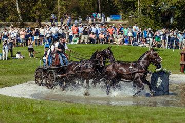 FEI World Equestrian Games... Tryon USA Carriage 1005.Dries Degrieck.1005A Dirk / 1005B Garrelt./ 1005C Grenadier./ 1005E Zilverone.BEL..Photo FEI/Christophe Tani..re
