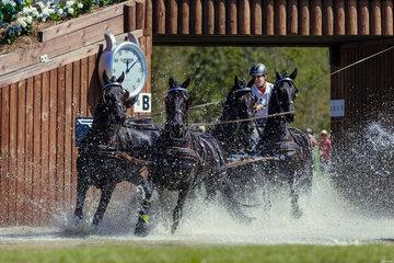 FEI World Equestrian Games... Tryon USA Carriage 1902.Edouard Simonet.1902B Topspeed Sanne / 1902C Dark Dream./ 1902D Topspeed Bauke./ 1902E El Fiero vd Vemmekeshoeve d'O7.Photo FEI/Christophe Tani..re