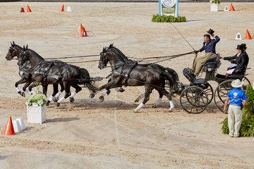 FEI World Equestrian Games... Tryon USA Driving Cones Boyd Exel AUS.Photo FEI/Liz Gregg