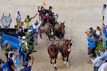 FEI World Equestrian Games... Tryon USA Driving Cones Chester Weber USA.Photo FEI/Liz Gregg