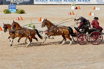 FEI World Equestrian Games... Tryon USA Driving Cones Chester Weber.Photo FEI/Liz Gregg
