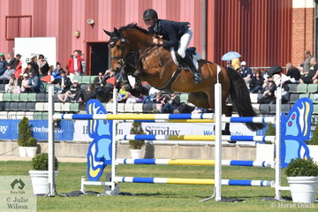 Tom McDermott rode Rory Hovell's promising Yalambi's Finnigan for four faults in the Group B jumping contest.