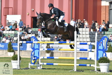 Paul Brent from the Yarra Valley, riding Neil Cinton's imported stallion, Fontaine Blue VDL just had four faults in the Group B jumping contest.
