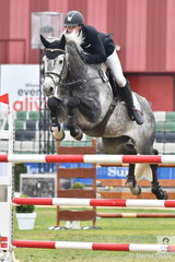 Brook Dobbin rode Wendy Keddell's New Zealand bred, 'Leopoldo MVNZ' to second place in the Group C class today.