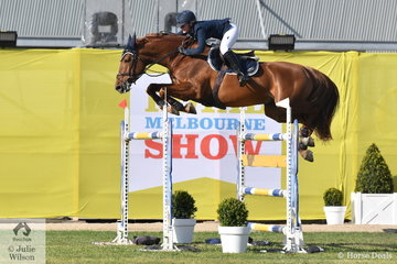Another talented young jumping rider, Brooke Langbecker rode her Quidam de Revel/Capitol 1 stallion, 'Quintago 1' to jump four and clear for fourth place in the 2018 Melbourne Royal World Cup Qualifier.