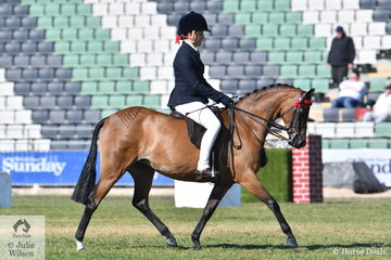 Chanele Hunter-Cooke rode her, 'Rosedale Pop Princess' by Whitmere Prince of Pop to win the class for Novice Pony 12.2-13hh.
