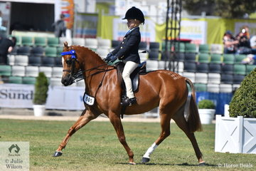 Chase Jackson from Queensland did a splendid job aboard his well performed, 'Mirinda Princess Perfect' to take third place in the class for Open Pony 11.2-12hh.