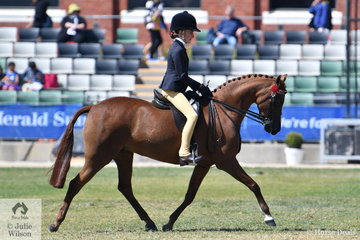 Zohe Willison rode her own and Hayley Willison's, 'Hamlot Parl Holy's Silk' to seventh place in the strong class for Open Pony 12-12.2hh.